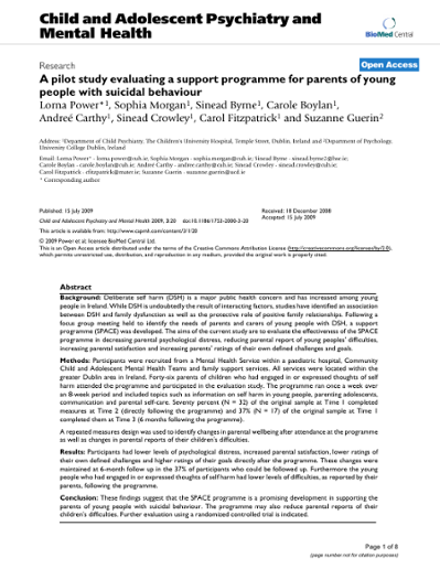 A pilot study evaluating a support programme for parents of young